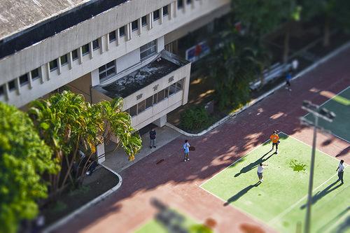 超逼真模型: 體育館與排球場